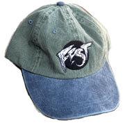FEST Dad Hat